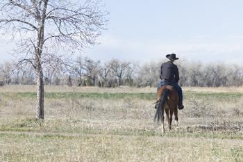 馬乗りなら得意だ。